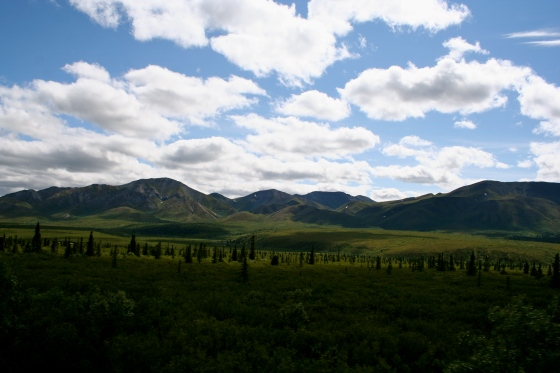Denali had beautiful scenery. I love the clouds.